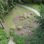 Gradina Botanica - Bustean